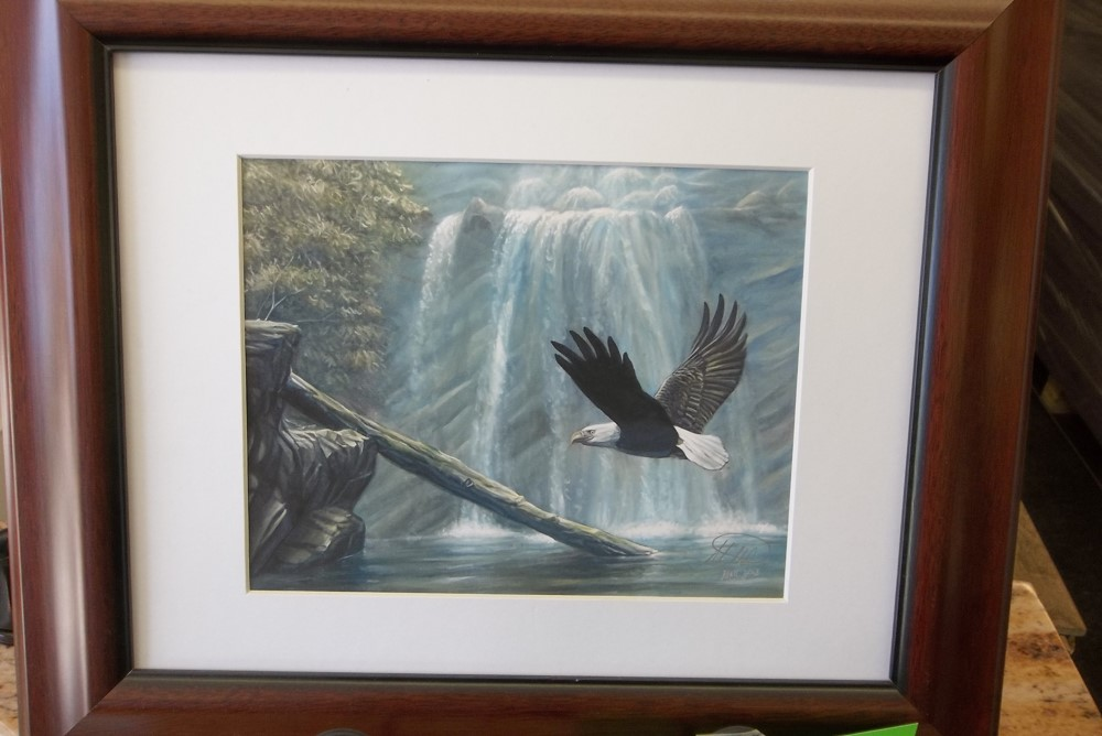Framed Print by Matt Doyle Fine art